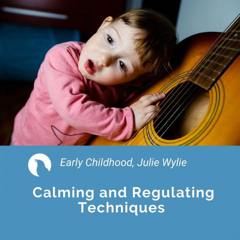 Calming and Regulating techniques