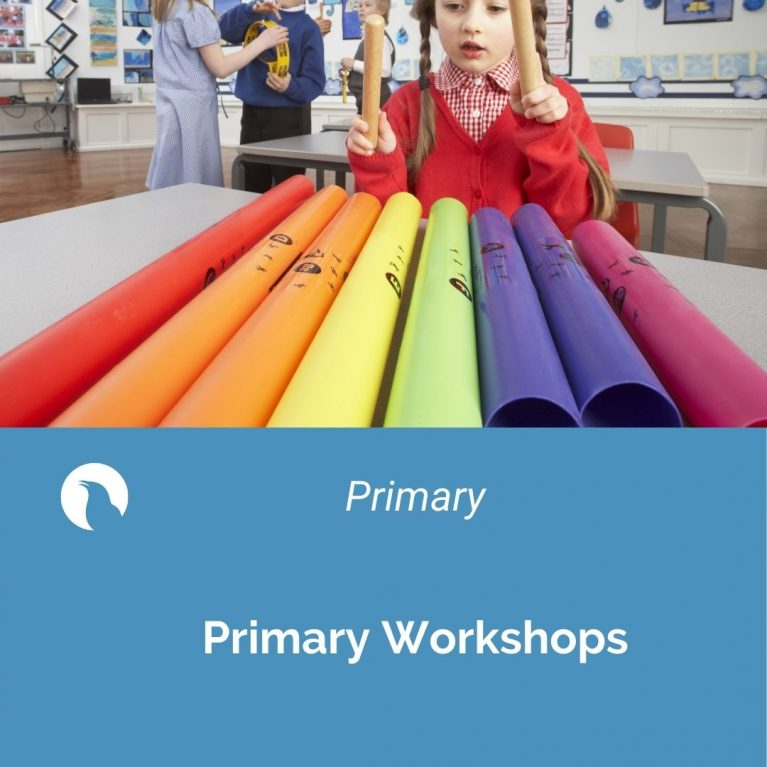 Primary School Music video workshops