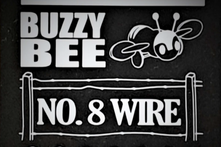 Beyond Buzzy Bees and Number 8 Wire (NZ AIMS conference)